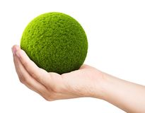 Green ball from grass on a palm Stock Photos