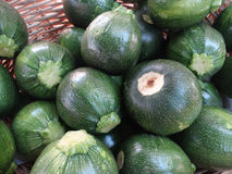 Green 8 ball squash, Cucurbita squash Stock Photography