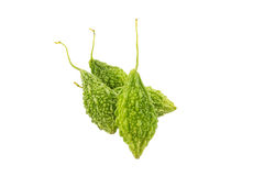 Green Balsam Apple  on white with clipping path Royalty Free Stock Image