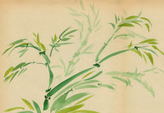 Green Bamboo. Painted in watercolor in oriental style vector illustration