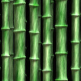 Green bamboo 3 Stock Photography