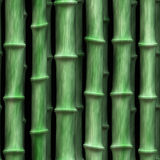 Green bamboo Royalty Free Stock Photo