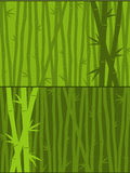 Green bamboo background Stock Image