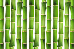 Green bamboo background Royalty Free Stock Photography