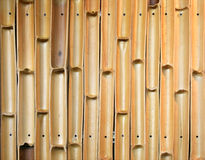 Green bamboo for background Stock Photo
