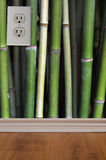 Green bamboo electric wall outlet Stock Photos
