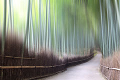 Green bamboo fence background Royalty Free Stock Photography