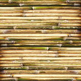 Green bamboo fence background Royalty Free Stock Photos