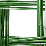 Green bamboo frame Royalty Free Stock Photo