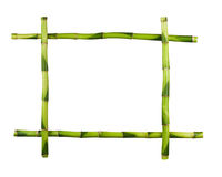 Green bamboo frame isolated on white background. Royalty Free Stock Photos