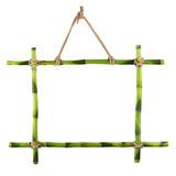 Green bamboo frame isolated on white background. Royalty Free Stock Images