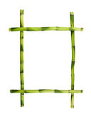 Green bamboo frame isolated on white background. Royalty Free Stock Photography