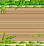 Green bamboo grass on brown Stock Photography