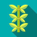 Green bamboo icon, flat style Stock Photography