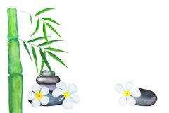 Green bamboo leaves and frangipani flowers watercolor illustration. Handdrawn spa background. Chinese banner template with text place. Bamboo leaf border Stock Photo