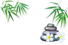 Green bamboo leaves watercolor illustration. Handdrawn zen background. Royalty Free Stock Image