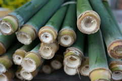 Green bamboo for making food Royalty Free Stock Photography