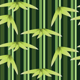 Green Bamboo pattern Stock Image