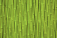 Green bamboo. Picture can be used as a background Stock Photos
