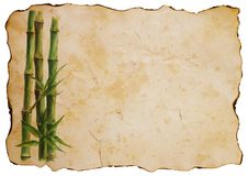 Green bamboo plants on old brown paper background royalty free illustration