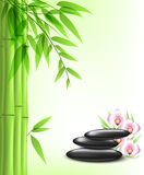 Green bamboo and spa stones Royalty Free Stock Photography