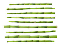 Green bamboo sticks Royalty Free Stock Image