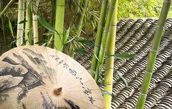 Green bamboo and umbrella. Umbrella, green bamboo and tile roof in chinese garden Stock Image