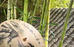 Green bamboo and umbrella Stock Image