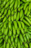 Green banana Royalty Free Stock Images