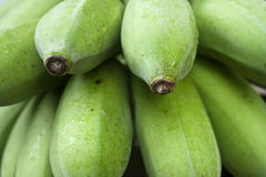 Green banana Royalty Free Stock Photography