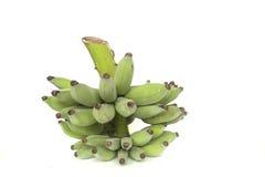 Green banana bunch Royalty Free Stock Image
