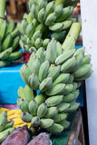 Green banana bunch prepare to sell Royalty Free Stock Photography