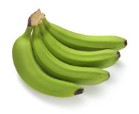 Green banana bundle Stock Image