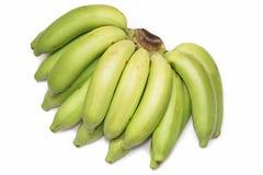 Green banana bundle Stock Photo