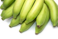 Green banana bundle Stock Photography