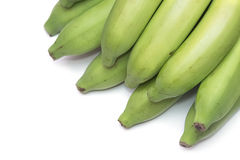 Green banana bundle Stock Images