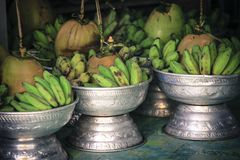 Green banana and coconut in pot for prayers in Buddhist and Hindu religion royalty free stock photography