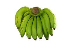 Green banana. Isolated on white background Royalty Free Stock Photos