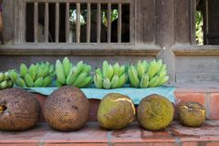 Green banana and jackfruit for sale in front of a wooden old house. Retro style.  Royalty Free Stock Photo