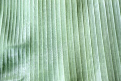 Green banana leaf. Stock Image