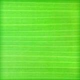 Green banana leaf background Stock Images