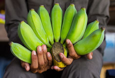 Green Banana male hands. Raw green banana is placed in the hands of men who suffer from polio Thailand Stock Photo