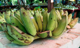 Green banana. In the market on foam Stock Images