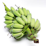 Green banana from organic farm Royalty Free Stock Photo