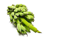 Green banana from organic farm Stock Images