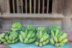 Green banana for sale in front of a wooden old house. Retro style.  Royalty Free Stock Images