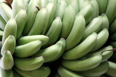 Green Bananas Stock Image