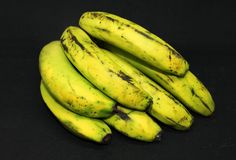 Green bananas on background - fresh healthy fruits royalty free stock images