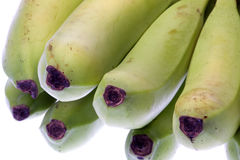 Green Bananas Isolated Stock Photos