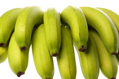 Green Bananas Isolated Royalty Free Stock Images